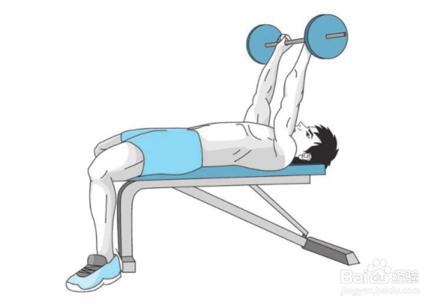 【杠铃训练胸肌 练胸肌】之杠铃仰卧曲臂上提