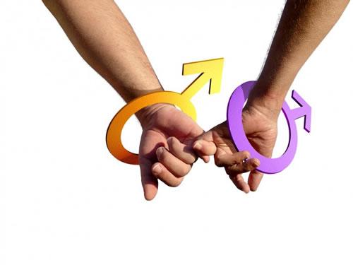 美国科学家探究男同性恋遗传联系