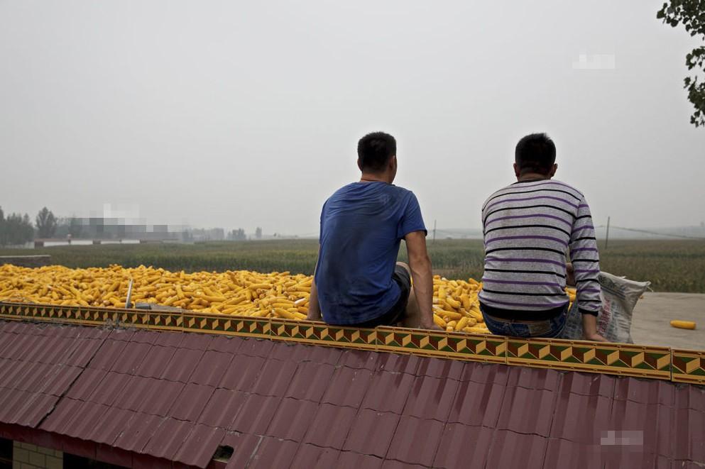 """河北农村一对80后""""同性恋""""的生活,他们不在意别人看法"""