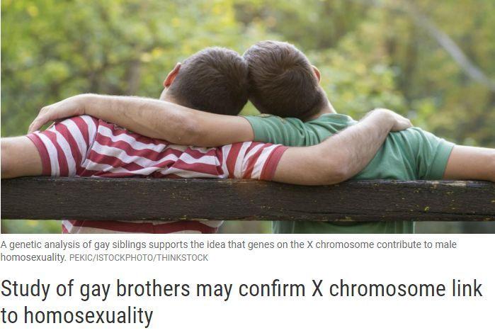 研究26890例同性恋后,哈佛医学院竟得出这个结论……