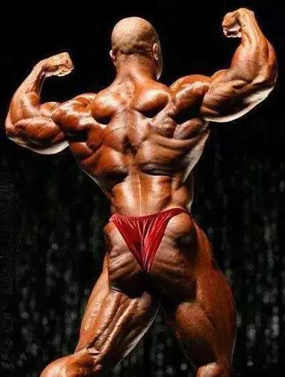 菲尔·希斯一周五练健身计划,带你看看健美巨匠如何练!